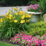 9 Tested Ways to Enhance Curb Appeal