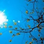 OC Housing Report:  A Blazing Hot Autumn